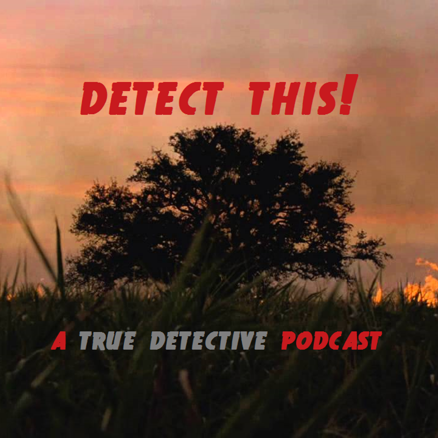 Detect This!: A True Detective Podcast